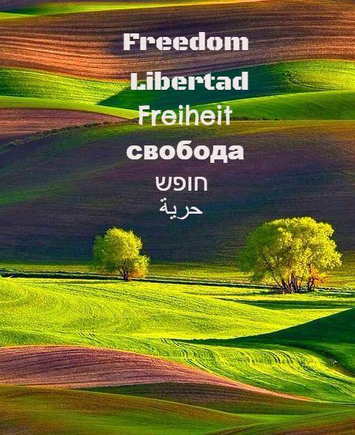 Pesaj y la libertad personal