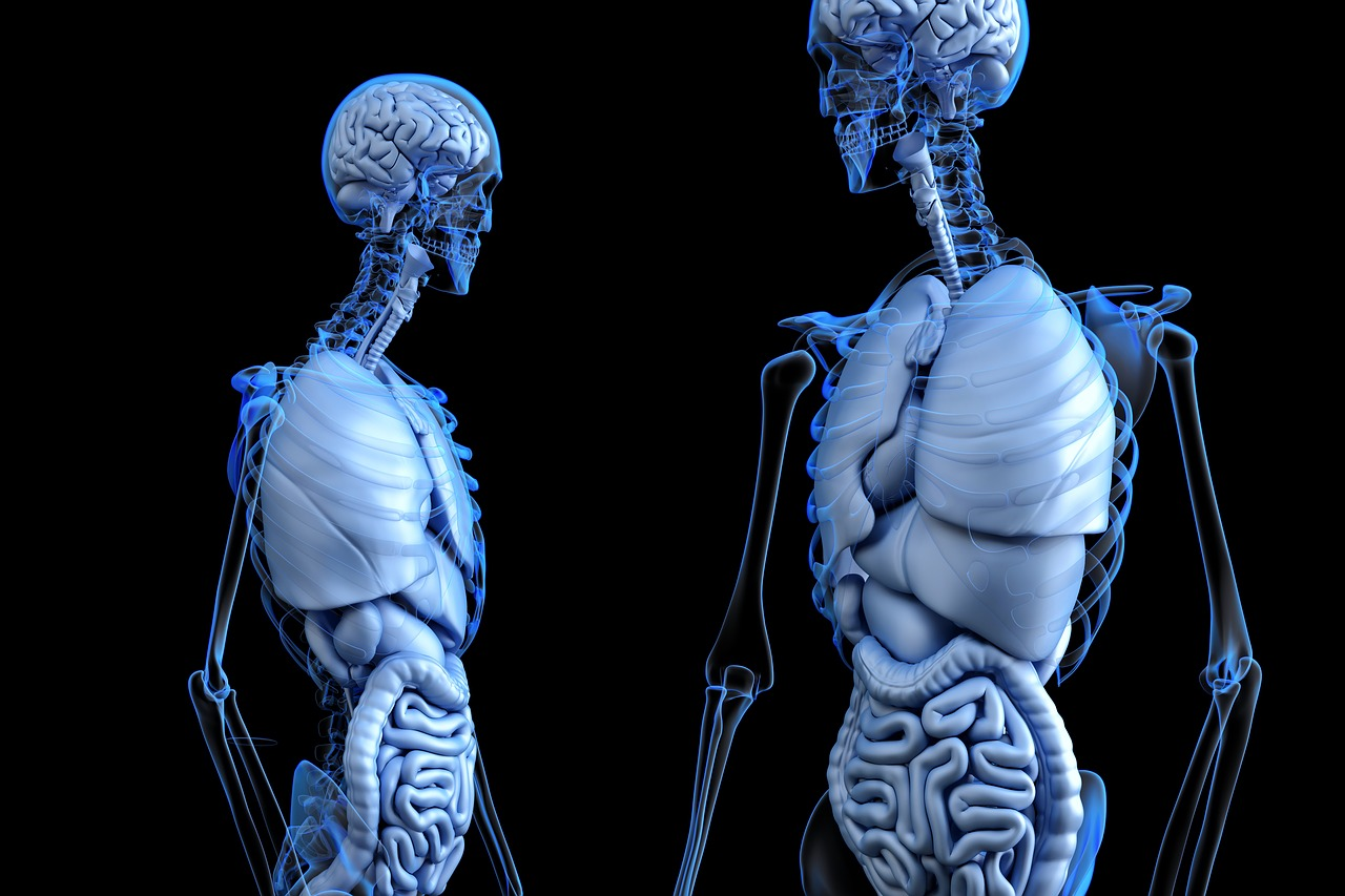 Impresión 3-D en Medicina