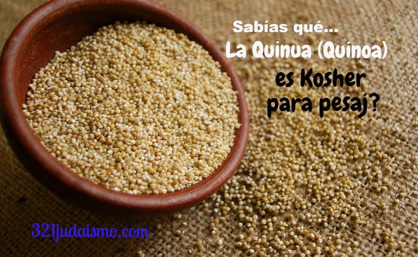 Sabias que la Quinua es Kosher para Pesaj?